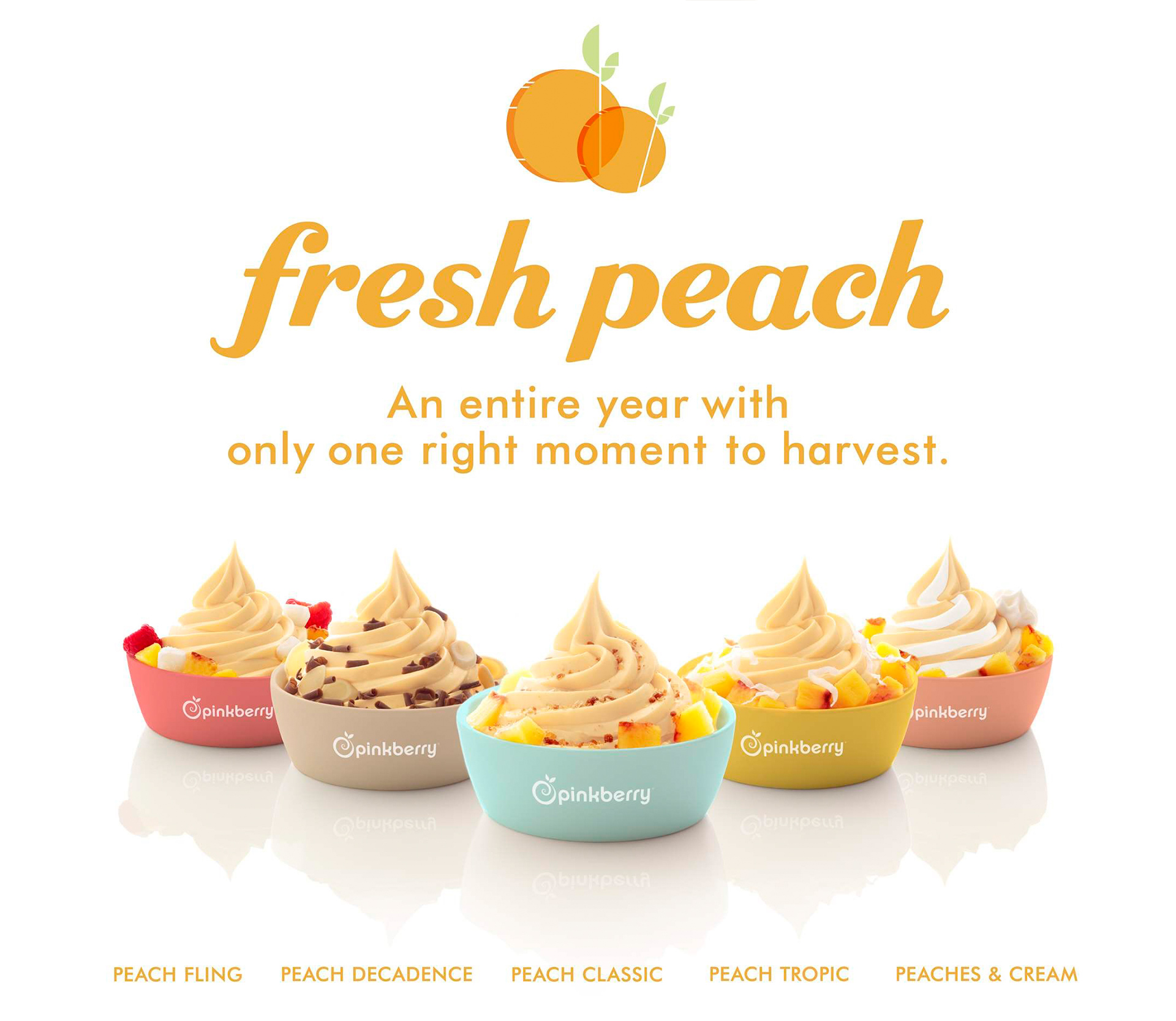 pinkberry_02_campaigns-2